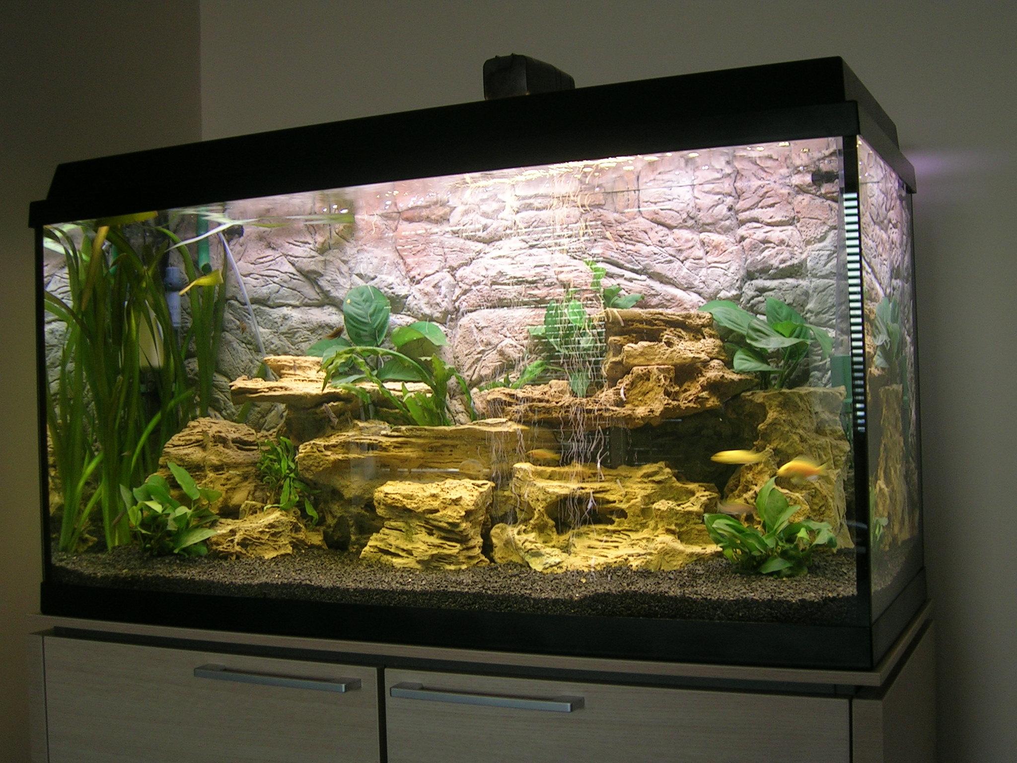 Natura Aquaria